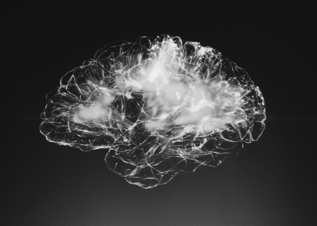 Anne Rulo - COVID-19 Life: Brain Change Takes Time